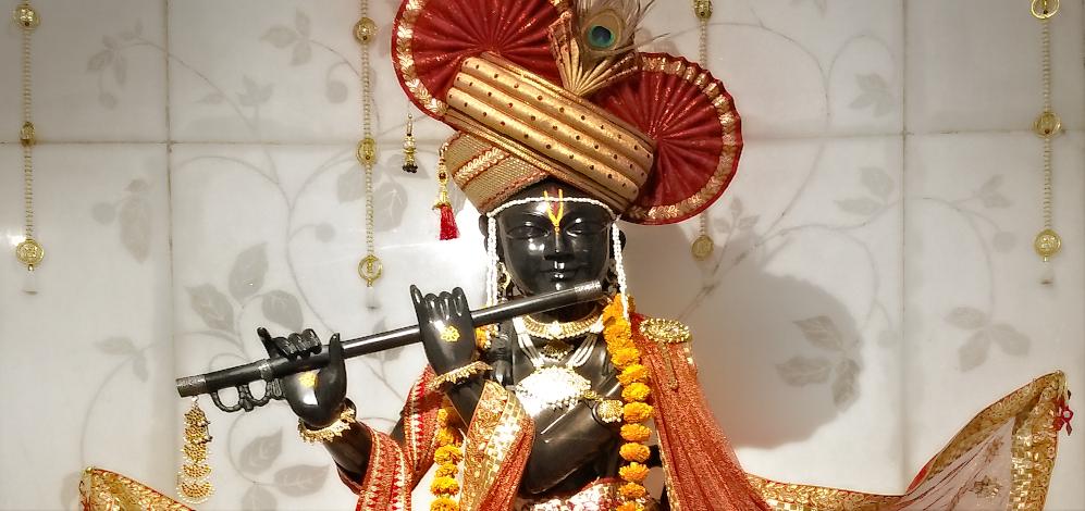 Grand wedding of Shri Krishna at ParamDham